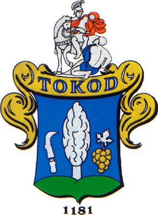 Tokod SE